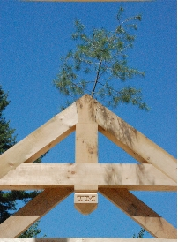 RoofTree0096